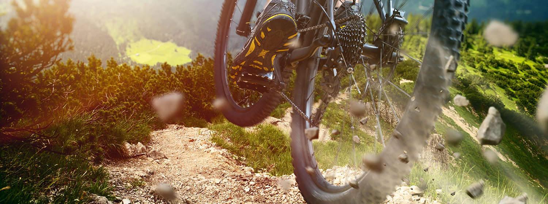 VoestlhofLeutasch_OlympiaregionSeefeld_Tirol_Urlaub_Sommer_Mountainbike_EBike_1500x560px